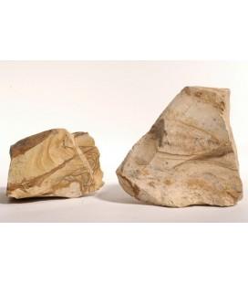 Zolux roccia decorativa tipo Picture stone pezzo singolo peso 1 kg ca.