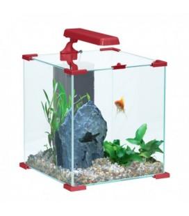 Zolux acquario Nanolife Tendence cube 20 rosso