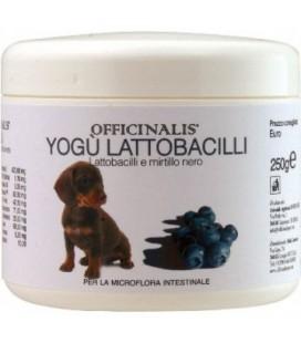 Officinalis Yogu' lattobacilli per cani e gatti 250 gr