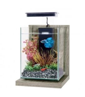 Zolux mini acquario Wiha Zebrano Grigio - CM 17X18X29H - 4LT
