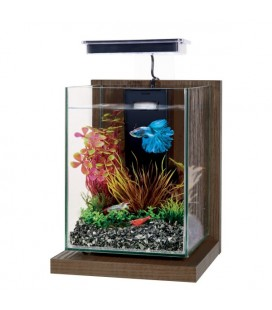 Zolux mini acquario Wiha Noyer Brun - CM 17X18X29H - 4LT