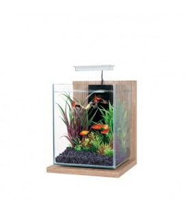 Zolux Kit Acquario Jalaya Noyer Marrone - 9.3LT - LxPxA: 23 x 23,5 x 35 cm.