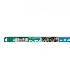 Sylvania Aquastar T8 25 watt