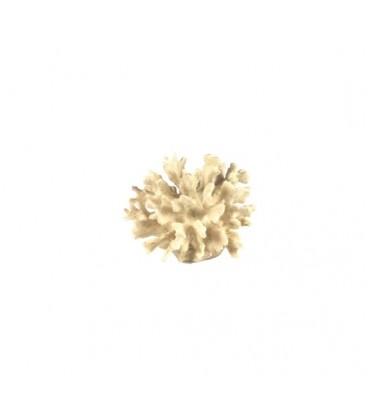 Giumar decorazione rs 003a