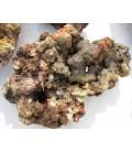 ROCCE VIVE TROPICALI FIJI (Qualità Super Premium) - KG. 1