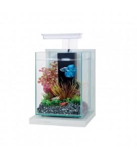 Zolux mini acquario Wiha Ceruse bianco - cm 17x18x29h - 4LT