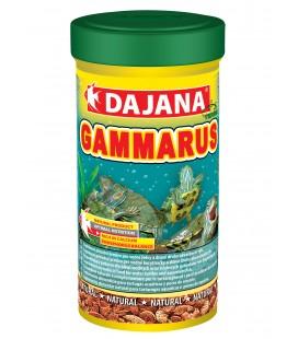 DAJANA GAMMARUS 100 ml gamberetti per Tartarughe