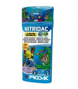 Prodac nitridac bacterias 500ml cultura di batteri