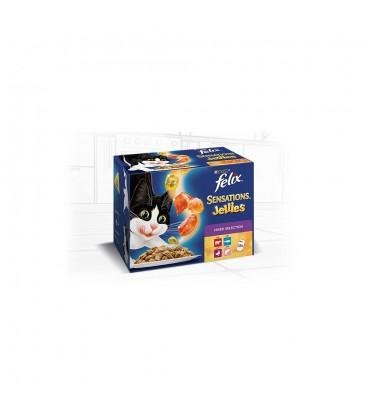 Purina Felix Sensation jelly 12x100 gr + 1 bustina Felix Sup omaggio