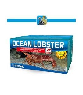 PRODAC OCEAN LOBSTER SALE PER ACQUARI CON CROSTACEI - ARAGOSTE - ASTICI 20 KG 600 LITRI