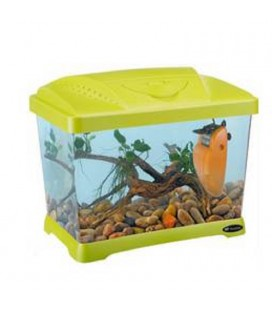 Ferplast Capri Junior Acquario in plastica 41 x 26,5 x h 34 cm - 21 L VERDE