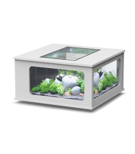 Aquatlantis Aquatable led 100x100cm (Colore : ASH GREY)