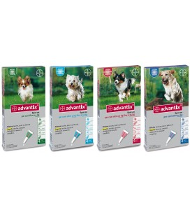 Bayer Advantix cane spot on per cani 10-25 kg pipette