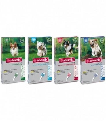 Bayer Advantix cane spot on per cani fino a 4 kg pipette