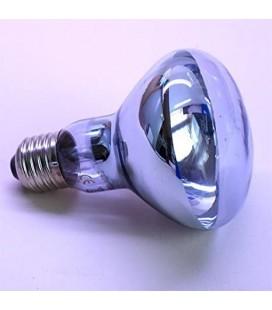Velma lampada alogena spot Daylight al neodimio per rettili attacco E27 52 watt