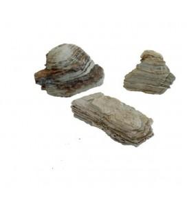 Blu Bios roccia pagota chiara 1 kg