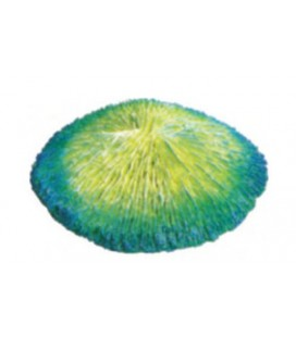 Giumar decorazione in resina corallo 15x14,5x4 cm