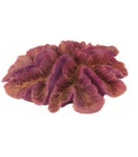 Giumar decorazione in resina corallo rosso 18x15x7 cm