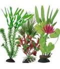 Ottavi pianta finta con base vari colori cm 6 h