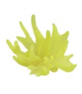Giumar decorazione in resina corallo giallo rb0018