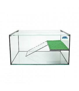 Blubios tartarughiera con isola in vetro e base con cornice legno 20x16 cm