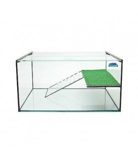 Blubios tartarughiera con isola in vetro e base con cornice legno 27x18 cm