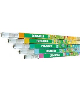 Dennerle Trocal lamp T8 36 watt