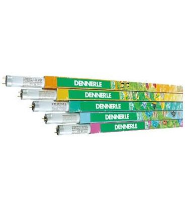 Dennerle Trocal lampada neon T8 36 watt