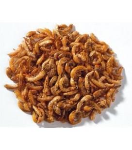 Ottavi Hi food gammarus 10-30 mm 1 lt
