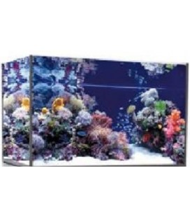 Vasca Acquario Artigianale Professionale Punto Tropicale 100x50x60h - 300LT (solo vasca)