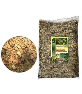 Exotica Terrarium Leaves - Substrato naturale di foglie secche per terrario 250 gr