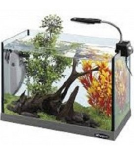 Ferplast Acquario Cayman 40 open 24 LT