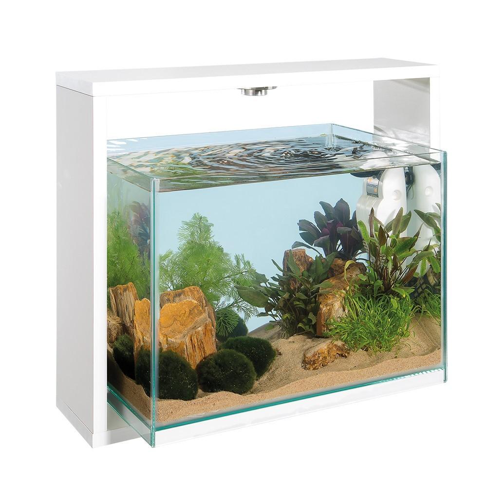 Acquario ferplast for Acquario ferplast