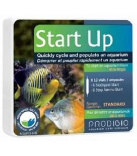 Prodibio Start up 6 fiale - batteri anti ammoniaca per acquario dolce e marino