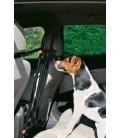 Zolux barra centrale / divisorio di sicurezza per auto