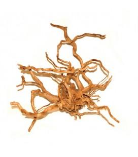 Ottavi legno red wood XXL SHOW