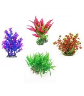 Ottavi flora plant special extra 10/15 cm