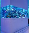 Vasche acquari su misura professionali artigianali con vetro extra chiaro